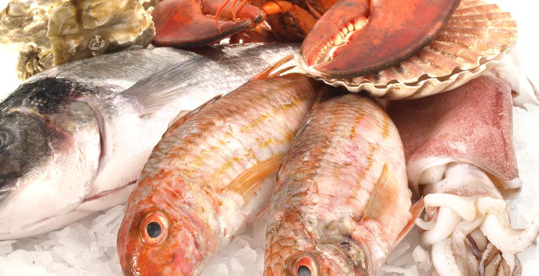 Pesce crudo: come consumarlo in tutta sicurezza ...