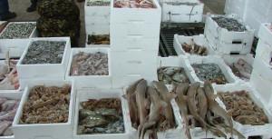 casse pesce